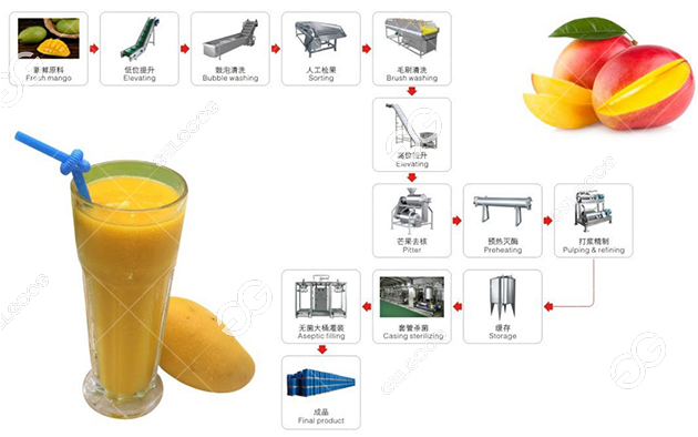 The mango juiceproduction line processing flow