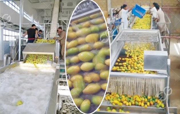 mango juice production line