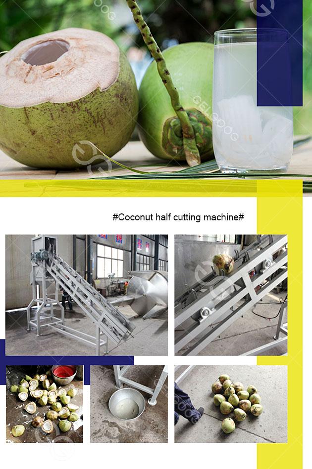 coconut cut half machine