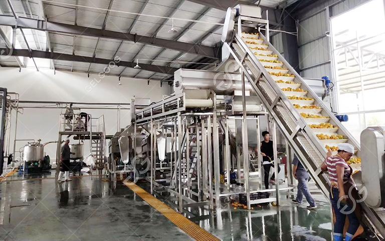passion juice production line