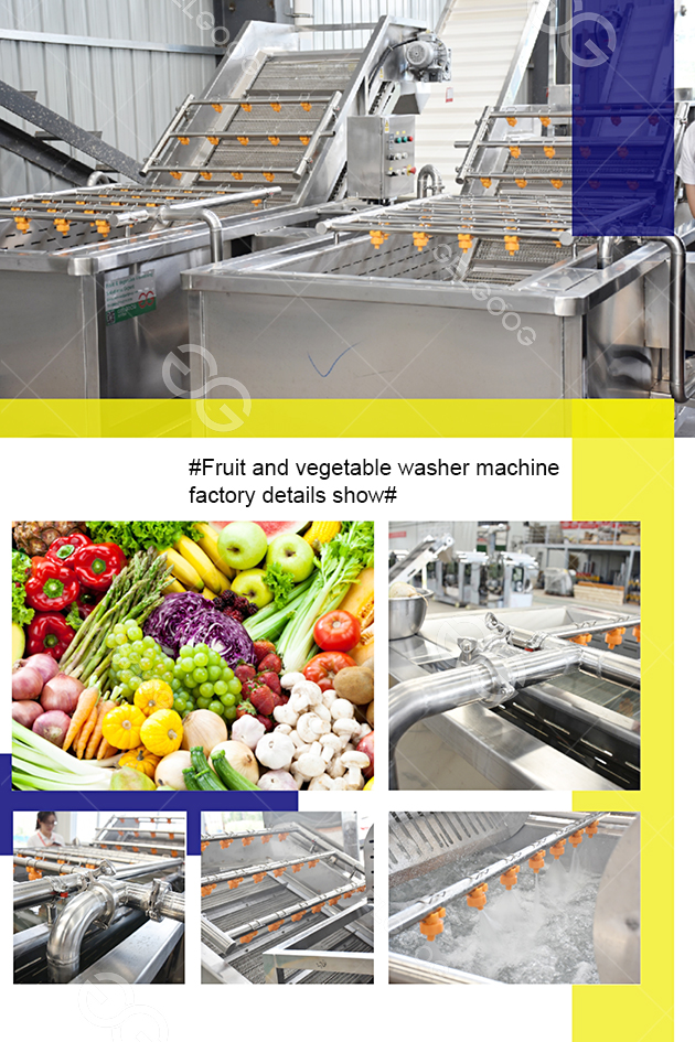 fruit and vegetable washer machine details show