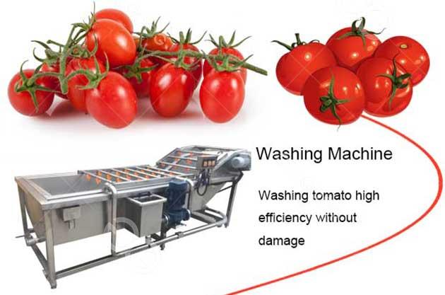 tomato washing machine