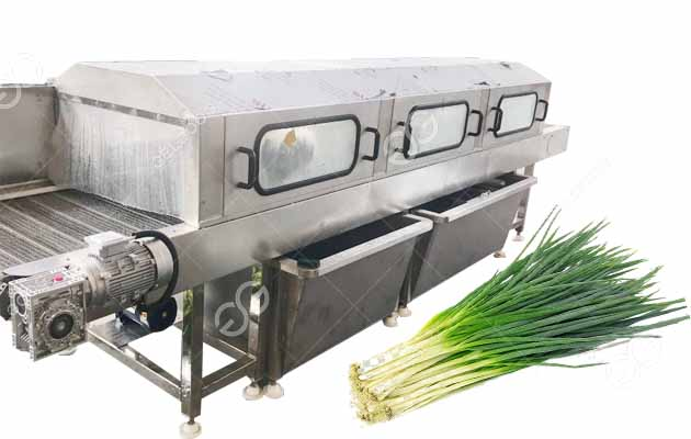 green onion washing machine