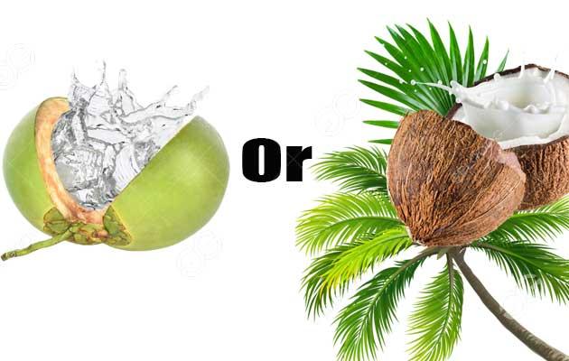 coconut-juice-or-milk