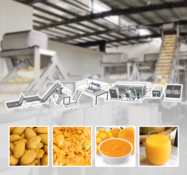 Fruit and Vegetable Juice Processing Line Solution