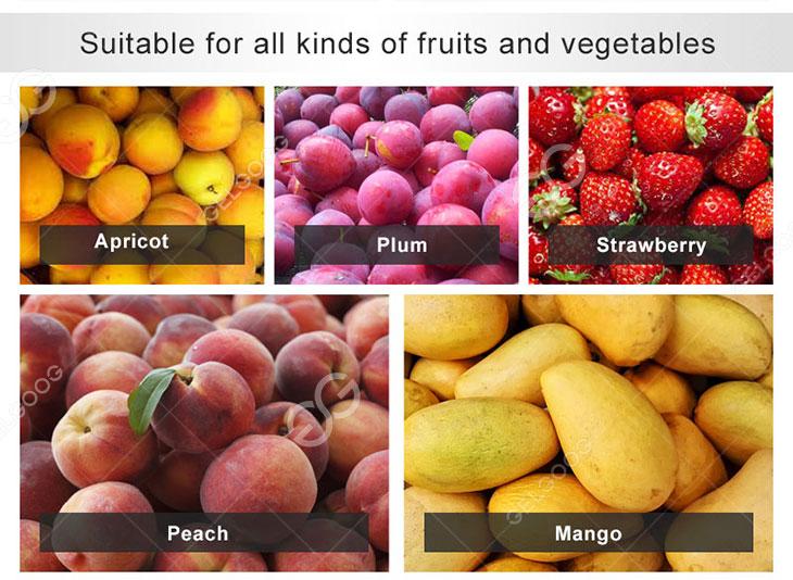 mango pulp machine applications