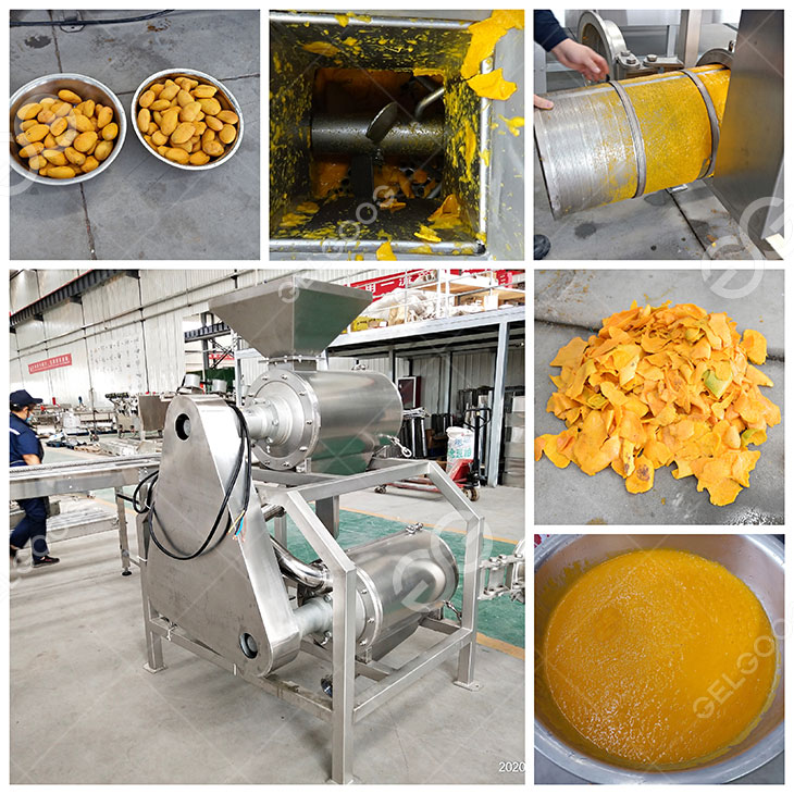 mango pulp machine details in our factory