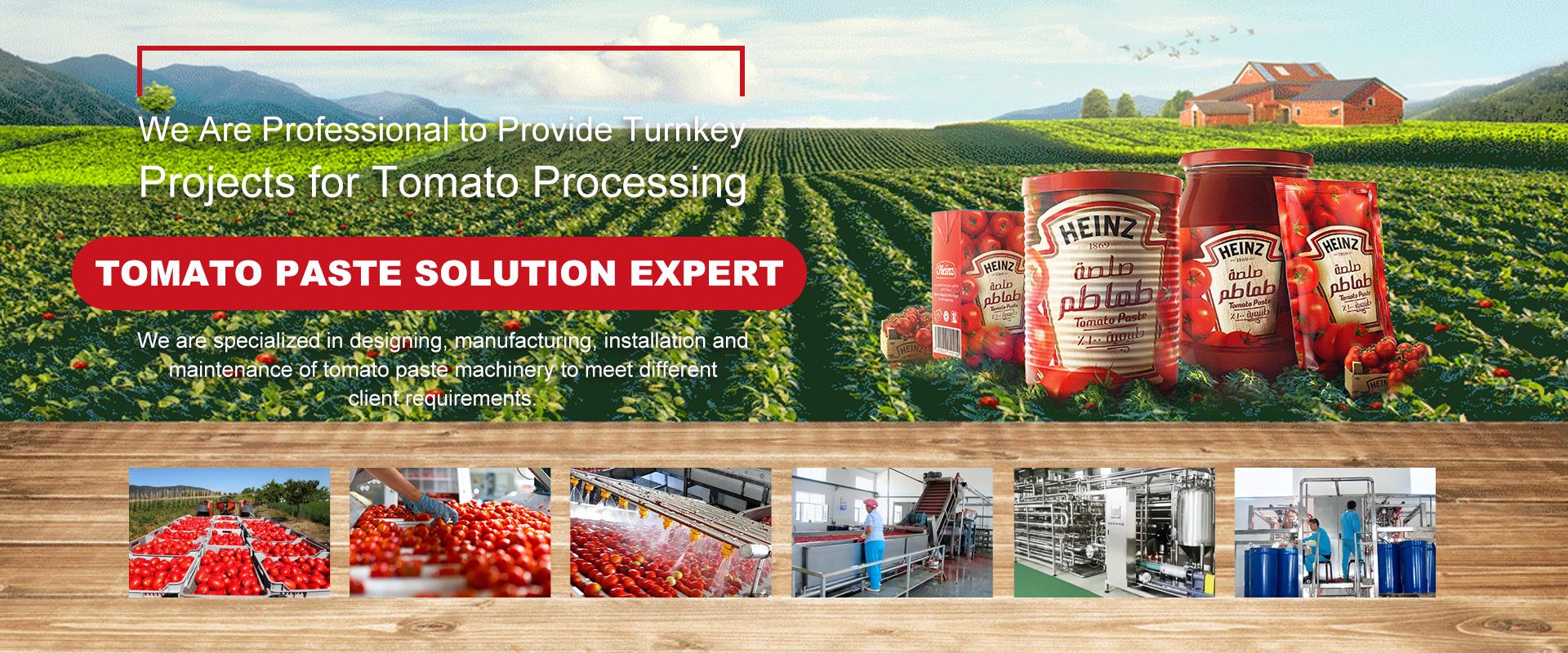 Tomato Paste Solution Expert