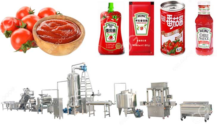 Tomato Sauce Manufacturing Plant Cost