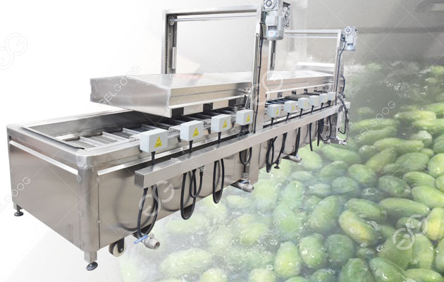 Stainless Steel Mango Hot Water Treatment Plant in Pakistan
