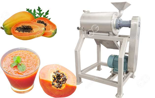 papaya pulp making machine